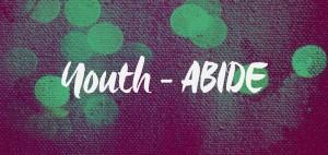 AbideLink300